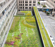 VMMC – Green Roof Study